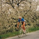 1991-kirschblüte
